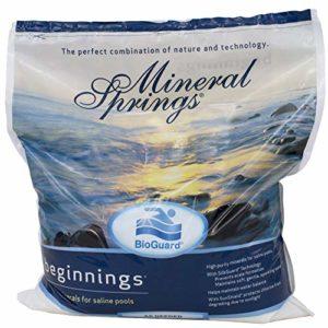 BioGuard Mineral Springs Beginnings - 27 9 Lb