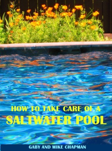How to Take Care of a Saltwater Pool